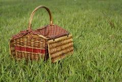 η χλόη πράσινη παρακωλύει picnic στοκ εικόνες