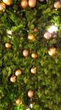 Η χρυσή σφαίρα στο χριστουγεννιάτικο δέντρο στοκ εικόνες