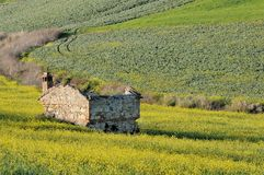 η χώρα ιταλικά καταστρέφει αγροτικό Στοκ Φωτογραφίες