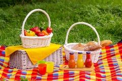 η χλόη γευμάτων αγοριών έχει λίγη picnic μεσημεριού λιβαδιών πίτσα δύο picnic ψωμιού καλαθιών λαχανι&kapp Α Στοκ Εικόνα