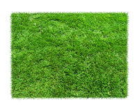 Η χλόη είναι πράσινα ορθογώνια στο άσπρο υπόβαθρο Στοκ Φωτογραφία