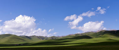 Η χλόη κάτω από το μπλε ουρανό και το άσπρο σύννεφο Στοκ Φωτογραφίες