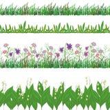 Η χλόη και τα λουλούδια, θέτουν άνευ ραφής Στοκ Εικόνες