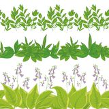 Η χλόη και τα λουλούδια, θέτουν άνευ ραφής Στοκ φωτογραφία με δικαίωμα ελεύθερης χρήσης