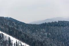 Η όμορφη άποψη των χιονωδών βουνών και το δάσος με chairlifts και τις κλίσεις σκι σε Bukovel, Ουκρανία, Καρπάθιο mounta στοκ εικόνες με δικαίωμα ελεύθερης χρήσης