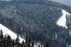 Η όμορφη άποψη των χιονωδών βουνών και το δάσος με chairlifts και τις κλίσεις σκι σε Bukovel, Ουκρανία, Καρπάθιο mounta στοκ φωτογραφία με δικαίωμα ελεύθερης χρήσης