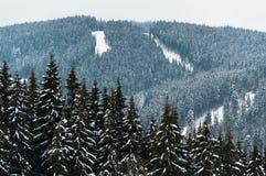 Η όμορφη άποψη των χιονωδών βουνών και το δάσος με chairlifts και τις κλίσεις σκι σε Bukovel, Ουκρανία, Καρπάθιο mounta στοκ φωτογραφία