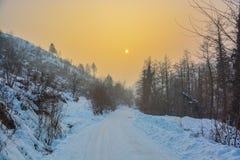 Η όμορφη δασική περιοχή που καλύπτεται με το χιόνι πριν από το ηλιοβασίλεμα Στοκ εικόνα με δικαίωμα ελεύθερης χρήσης