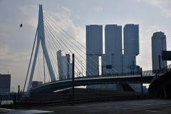 Η όμορφη γέφυρα στο Ρότερνταμ Στοκ Εικόνες