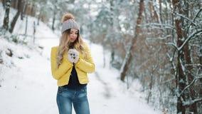 Η όμορφη γυναίκα στο χειμερινό καπέλο θερμαίνει τα χέρια της που στέκονται έξω στο χιόνι στο δάσος απόθεμα βίντεο