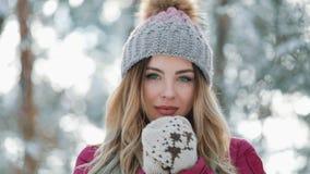 Η όμορφη γυναίκα στο χειμερινό καπέλο χαμογελά να σταθεί έξω στο χιόνι στο δασικό πορτρέτο όμορφη να εξετάσει κοριτσιών απόθεμα βίντεο