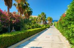 Η όμορφη ελληνική οδική διάβαση ξενοδοχείων στην παραλία θάλασσας για τους τουρίστες μεταξύ κόκκινου άσπρου αυξήθηκε ζωηρόχρωμα λ Στοκ Εικόνες