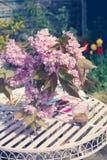 Η όμορφη και ρομαντική σκηνή στον εγχώριο κήπο με ένα βάζο του ιαπωνικού δέντρου κερασιών ανθίζει Στοκ Φωτογραφίες