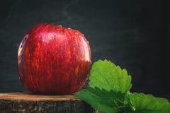 Η όμορφη κόκκινη Apple με τα φύλλα μεντών στο ξύλινο υπόβαθρο διάστημα αντιγράφων Στοκ εικόνες με δικαίωμα ελεύθερης χρήσης