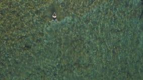 Η όμορφη νέα γυναίκα σε ένα κολυμπώντας κοστούμι απολαμβάνει στο κρύσταλλο - σαφής θάλασσα απόθεμα βίντεο
