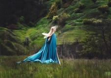 Η όμορφη νεράιδα Στοκ εικόνα με δικαίωμα ελεύθερης χρήσης