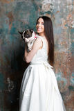 Η όμορφη νύφη κρατά ένα σκυλί Στοκ εικόνα με δικαίωμα ελεύθερης χρήσης