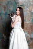Η όμορφη νύφη κρατά ένα σκυλί Στοκ Φωτογραφίες