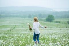 Η όμορφη ξανθή γυναικεία γυναίκα κοριτσιών στον πράσινο τομέα με άσπρο πουκάμισο καπέλων τζιν λουλουδιών το chamomile φορώντας κά Στοκ Εικόνες