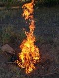 Η όμορφη πυρκαγιά Στοκ εικόνες με δικαίωμα ελεύθερης χρήσης