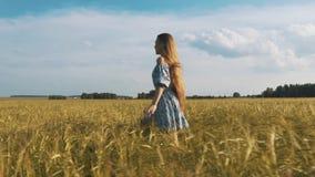 Η όμορφη υγιής γυναίκα στο σκοτεινό φόρεμα με τις floral στάσεις τυπωμένων υλών μέσα και τρέχοντας έπειτα πέρα από τον πράσινο το απόθεμα βίντεο