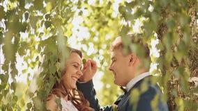 Η όμορφοι και ευτυχείς νύφη και ο νεόνυμφος κάτω από τους κλάδους των δέντρων σημύδων χαίρονται από κοινού απόθεμα βίντεο
