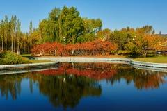 Η όχθη της λίμνης δέντρων πτώσης Στοκ εικόνα με δικαίωμα ελεύθερης χρήσης