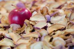 Η ώριμη κόκκινη Apple που βρίσκεται σε έναν σωρό ξηρού - φρούτα Στοκ φωτογραφία με δικαίωμα ελεύθερης χρήσης
