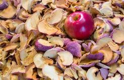 Η ώριμη κόκκινη Apple που βρίσκεται σε έναν σωρό ξηρού - φρούτα Στοκ Εικόνες