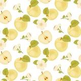 Η ώριμη Apple Άνευ ραφής ύφασμα πράσινο φύλλο άνοιξη φωτογραφιών κήπων ανθών μήλων Κίτρινο μήλο μήλο μισό διανυσματική απεικόνιση