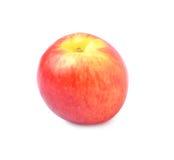 Η ώριμη Apple Στοκ φωτογραφίες με δικαίωμα ελεύθερης χρήσης