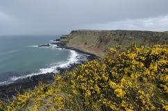 Η Antrim ακτή, Βόρεια Ιρλανδία Στοκ εικόνα με δικαίωμα ελεύθερης χρήσης