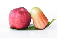 Η Apple & αυξήθηκε Apple - εικόνα αποθεμάτων Στοκ Εικόνα