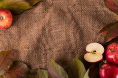 Η Apple και βγάζει φύλλα sackcloth Στοκ φωτογραφίες με δικαίωμα ελεύθερης χρήσης