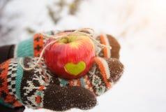 Η Apple με την καρδιά παραδίδει μέσα το χειμώνα Στοκ εικόνες με δικαίωμα ελεύθερης χρήσης