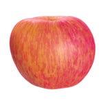 Η Apple που απομονώνεται ώριμη Στοκ Εικόνες