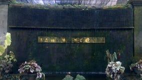 Η begonia πηγή κήπων, Μπαλί απόθεμα βίντεο