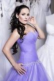 Η beuatiful γυναίκα έντυσε στο φόρεμα βραδιού Στοκ εικόνα με δικαίωμα ελεύθερης χρήσης