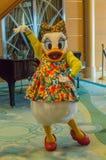 Η Daisy χτυπά θέτει σε μια τροπική εξάρτηση Στοκ Φωτογραφίες