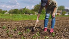 Η Farmer με μια αξίνα κάνει μια τρύπα στο έδαφος φιλμ μικρού μήκους