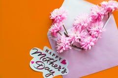 η floral έννοια ευχετήριων καρτών, επίπεδη βάζει το λουλούδι ημέρας δίνει το γιο μητέρων mum τρυφερή εικόνα άνοιξη Ρόδινο σύνολο  Στοκ φωτογραφίες με δικαίωμα ελεύθερης χρήσης