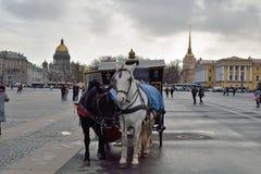 Η horse-drawn μεταφορά στο τετράγωνο παλατιών Στοκ εικόνες με δικαίωμα ελεύθερης χρήσης