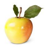 Η Juicy Apple με τα πράσινα φύλλα Στοκ Εικόνα