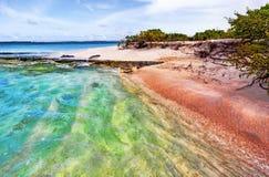 Η Maldivian ακτή με το διαφανές νερό χτυπά την κοραλλιογενή ύφαλο Στοκ Εικόνες