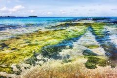 Η Maldivian ακτή με το διαφανές νερό χτυπά την κοραλλιογενή ύφαλο Στοκ φωτογραφία με δικαίωμα ελεύθερης χρήσης