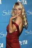 Η Pamela Anderson γιορτάζει τα 40α γενέθλια στοκ εικόνες με δικαίωμα ελεύθερης χρήσης