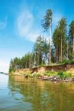 θάλασσα έλατων Στοκ φωτογραφίες με δικαίωμα ελεύθερης χρήσης