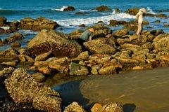 θάλασσα ανθρώπων στοκ φωτογραφίες με δικαίωμα ελεύθερης χρήσης