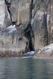 θάλασσα απότομων βράχων σπ&et Στοκ Εικόνες
