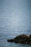 θάλασσα ατόμων Στοκ εικόνες με δικαίωμα ελεύθερης χρήσης